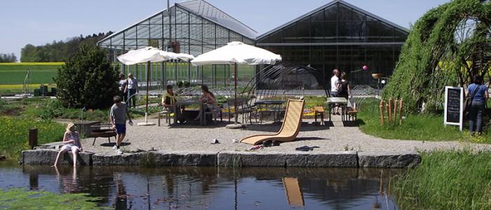 Wunderschöner Garten mit Teich
